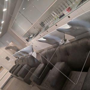 Hauchschutz mit Deckenabhängung 670x750